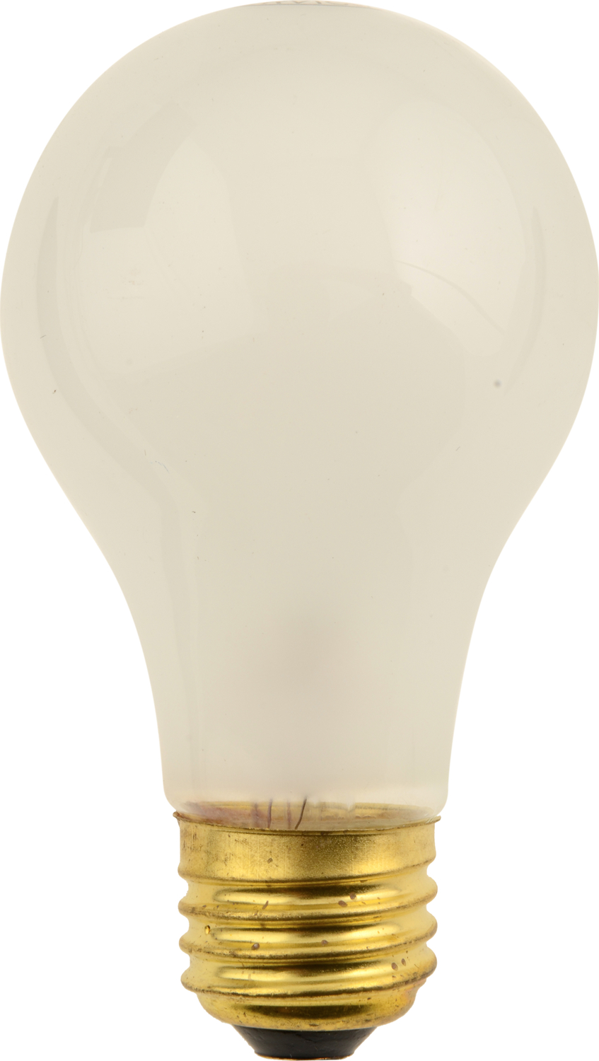 Multi Purpose Light Bulb