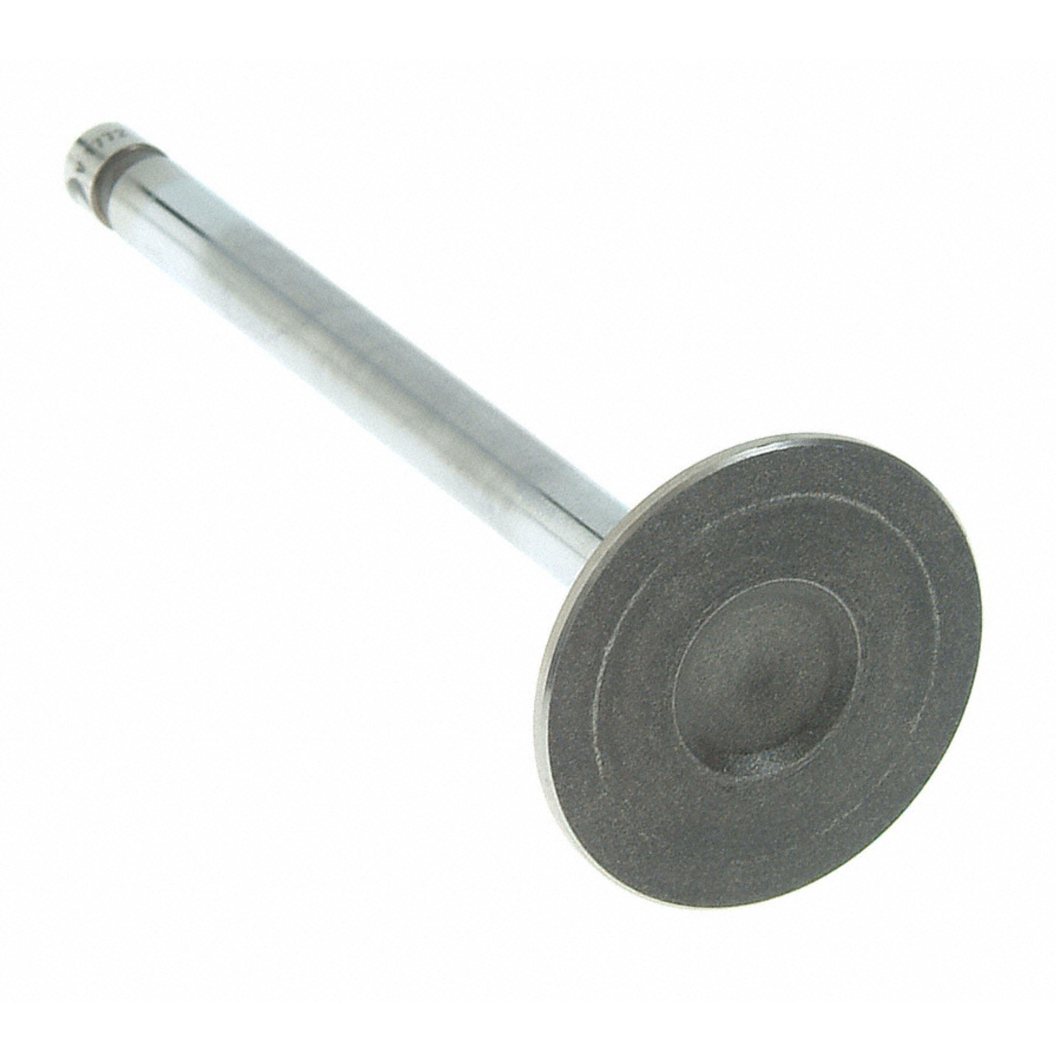 Engine Exhaust Valve